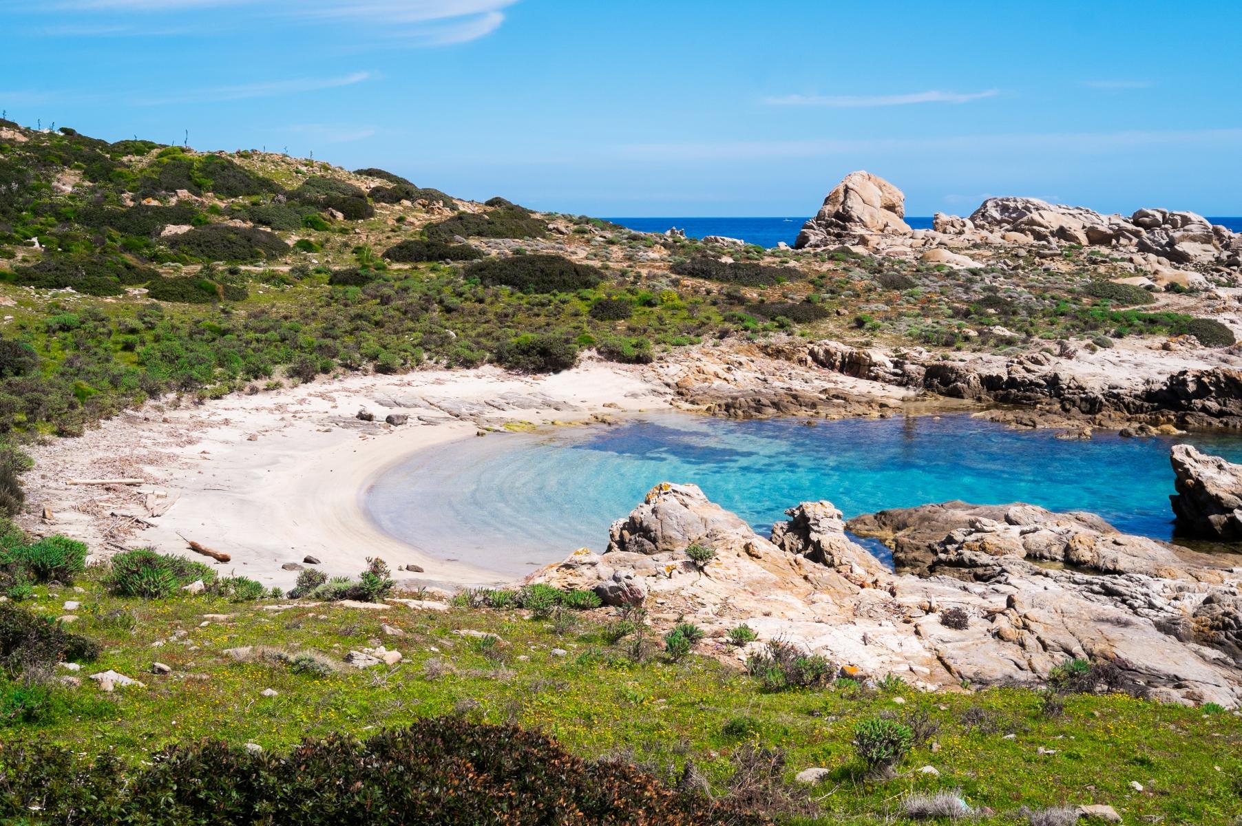 Isola dell'Asinara – Un'escursione unica
